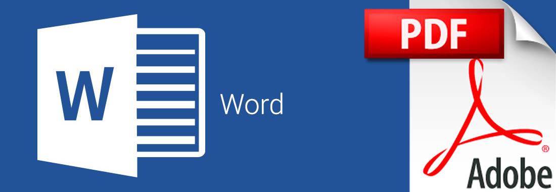 curr u00edculo em word ou pdf  qual formato para o meu curriculum
